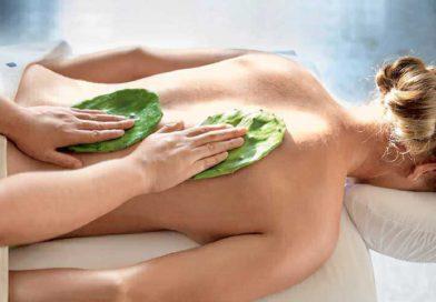 Massaggio al Cactus